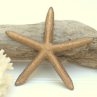 Beach Wedding Shimmery Espresso Brown Colored Real Pencil Starfish - Painted Reception and Nursery Decor - Ocean Coastal Home and Dorm Decor