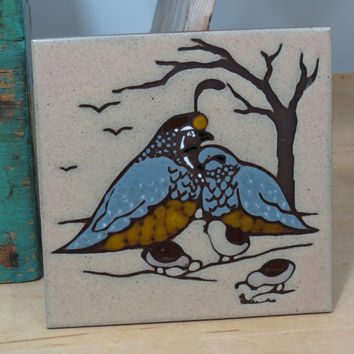 Gambel Quail With Chicks Ceramic Art Tile . Vintage Southwest Decor . Sandstone Creations Arizona . Tan Blue Brown