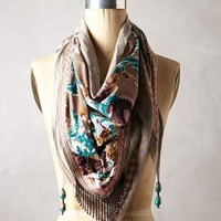 Almina Kite Scarf by Chloe Oliver Assorted One Size Scarves