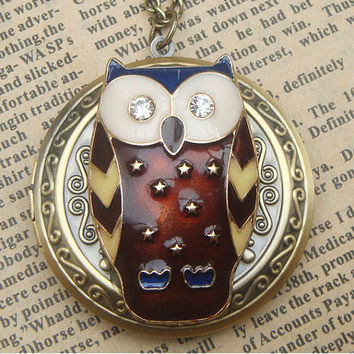 Steampunk  Owl 60501 Locket Necklace Vintage Style by sallydesign