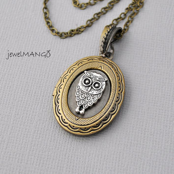 Owl Locket Necklace, Oval Locket, Photo Locket Necklace, Vintage Inspired Lovely locket, mixed metal, cute Owl on locket, long necklace