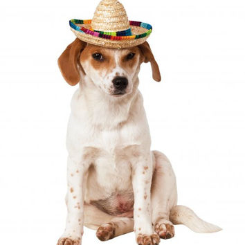 Straw Dog Sombrero with Multicolor Trim
