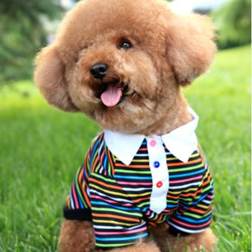 Adorable Dog Fashion Rainbow Striped T-Shirt for Shop Pet Clothes & Apparel: Adorable Dog Fashion Rainbow Striped T-Shirt for Shop Pet Clothes & Apparel-Size 8