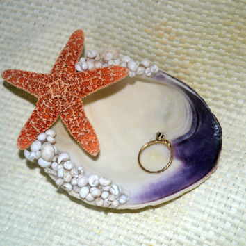 Seashell Ring Dish White and Blue With a 2 1/2 Starfish Paired With Litorina Shells