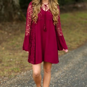 Sheer Happiness Burgundy Dress