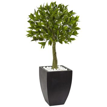 Artificial Silk Tree -Bay Leaf Topiary Tree With Black Wash Planter