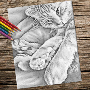 Printable coloring page, Adult Coloring Page, Instant download coloring, Tabby Cat in Corner, coloring book page, coloring book for adult