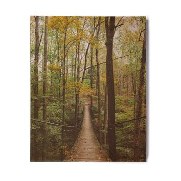 "Ann Barnes ""A Walk In The Woods"" Green Gold Nature Travel Photography Digital Birchwood Wall Art"