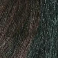*JUMBO HAIR BRAID COLOR #F1b/33-MIX