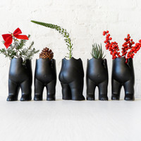 """SET OF FIVE Tushiez Winter Greens - Size 5"""" - Black or White - Matte Or Glossy - Stocking Stuffer"""