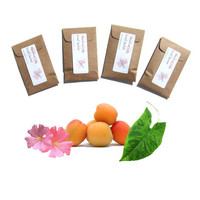 4 Sundance Scented Sachets - Home Fragrance - Favor Packets - DIY Custom Color - Tropical Decor - Apricot Fushia - Small