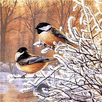 Winter Birds 3D Diamond Painting Cross Stitch Kits DIY Diamond Embroidery Rhinestone Square Full Dill Home Decor Sewing Crafts