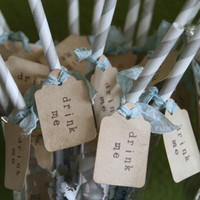 NEWDrink Me Carnival Straws weddings parties by pinkcherrymama