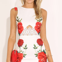 Sleeveless Floral Cutout Lace Trimmed Keyhole Back Mini Dress