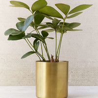 """Mod Metal 3"""" Planter 