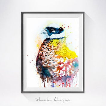 Reeves's Pheasant watercolor painting print, Reeves's Pheasant art, bird watercolor, animal illustration, bird illustration, bird art,