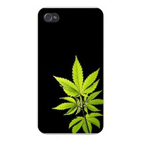Apple Iphone Custom Case 4 4s White Plastic Snap on - Cannabis Marijuana Weed Plant on Black Background