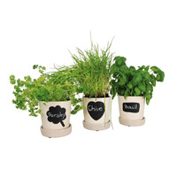 Identify Flower Pots - Set of 3
