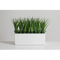 """9"""" Grass in White Paper Pot - Cacti Collection"""