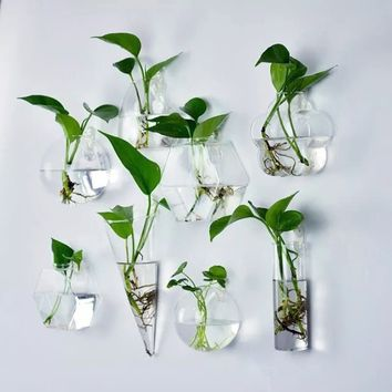 Home Decor Wall Vase Ball Shape Glass Wall Hanging Vase Water Planter Vase Goldfish Bowl Wall Decorations World of Fashion