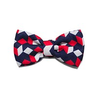 Mr Scooter | Dog Bow Tie
