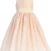 Blush Pink Floral Burnout Organza Dress with Poly Silk Sash (Little Girls 6 months to Size 7)