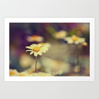 buttercup daisies Art Print by ingz