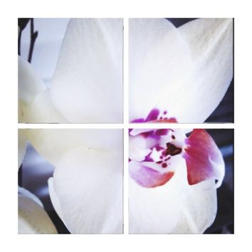 White Orchid Floral Canvas Print