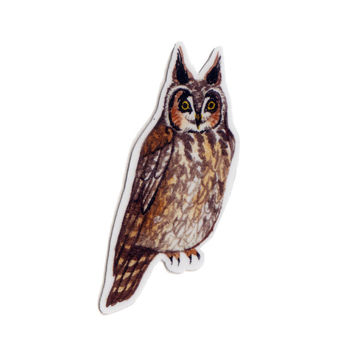 Long-eared Owl Bird Magnet