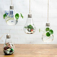 Glass Light Bulb Hanging Boho Terrarium Planters
