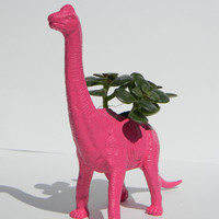 Geek Gift Dinosaur Planter Bubble Gum Pink with Home or Office Decor