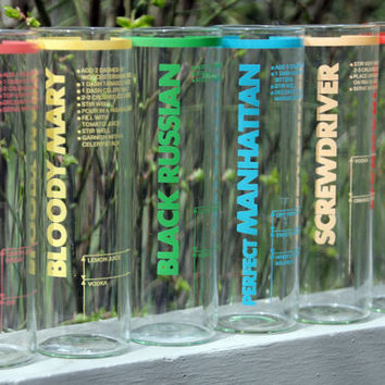 Vintage 70s Glasses with Drink Recipes Right on the Glass FUN FUN FUN Set of 6