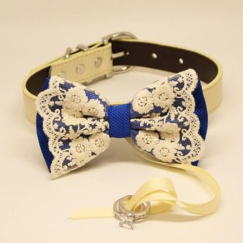 Royal Blue Lace Bow Tie collar, Dog ring bearer Wedding, Pet lovers, Lace, Something blue