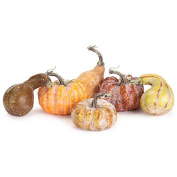 Decorative Pumpkin and Gourd Set