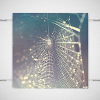 "Spiderweb Photograph Macro / pastel dew woodland fantasy purple blue gray environment dark beauty / 8x8 photography print / ""Glitter Trap"""