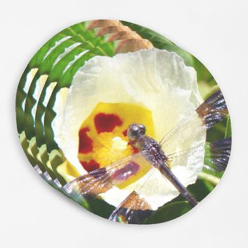 Dragonfly Round Placemats