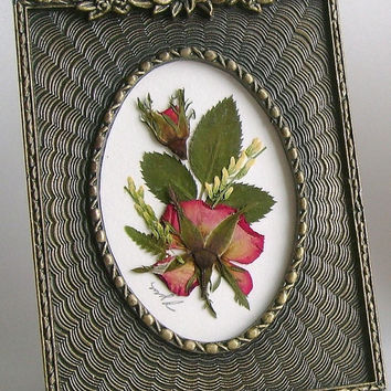 Pressed rose picture, Victorian framed roses, burnished brass frame, miniature, real roses, rosebuds, yellow accents, dried flowers