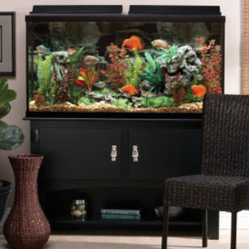 MARINELAND® 60 Gallon Heartland Aquarium Ensemble | Aquariums | PetSmart