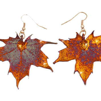 Real Leaf Hook Drop EARRINGS Sugar Maple in Iridescent Copper
