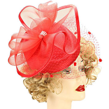 Kentucky Derby Church Wedding Floral French Net Hair Comb Cocktail Fascinator - Red