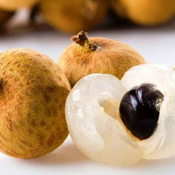 5 Longan Dragon Eye Sweet Fruit Tree Seeds |  Rare Dwarf Sri Chompoo Aka Exotic | Bonsai Home Garden Decor Plants Growing