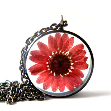 Maroon Daisy Resin Pendant Necklace - Real daisy encased in resin with open back copper bezel, Pressed Flower Jewelry - Resin Jewelry