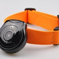 Digital Clip-On Collar Pet Video Camera