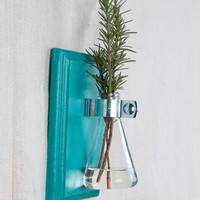 Wall Vase - Turquoise Hanging Vase, Bud Vase - Wall Sconce Vase - Science Chic, Glass Flask, Aqua, Ocean