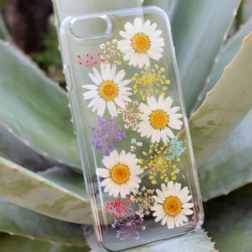 Hand Selected Natural Dried Pressed Flowers Handmade on iPhone 5c Crystal Clear Case: Coneflower White Swan Daisy Flower Design