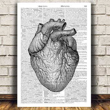 Heart print Anatomy decor Macabre poster Gothic print RTA559