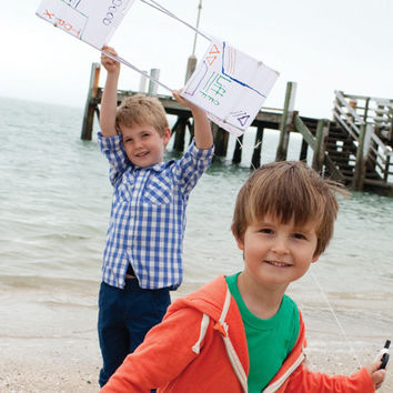 Build Your Own Box Kite Kit