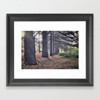 the forest of a thousand stories Framed Art Print by Guido Montañés