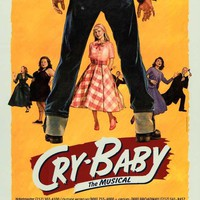 Cry Baby the Musical 11x17 Broadway Show Poster