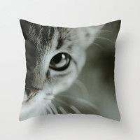 Cat pillow Cover, Cat Photography, kitten photo, cute cat whiskers, tabby cat photograph, grey photo, for the cat lover, bedroom pillow